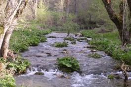 Di Nicola: il fiume Giovenco preziosa risorsa da salvaguardare