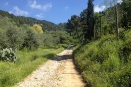Riscoprendo antichi sentieri con Ethnobrain