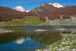 Al Lago Vivo con Ethnobrain
