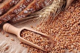 CasaPound distribuisce gratuitamente beni alimentari a famiglie bisognose