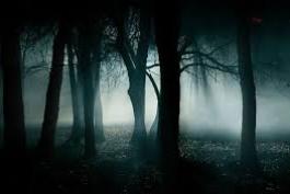 La notte è nemica, ma un buon aiuto evita il peggio...