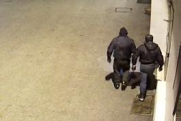 Topo di appartamento riconosciuto durante la fuga... preso